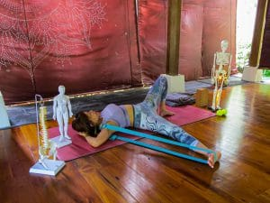Stretch and Surrender - The Yoga Rescue - Lisa Fiona Sapulette