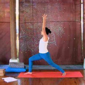 Ibu Hamil trimester pertama - Mariani Suwirya - online class - The Yoga Rescue