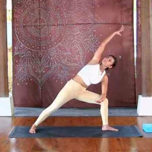 Vinaysa Flow - Luci Soemitra - online class - The Yoga Rescue