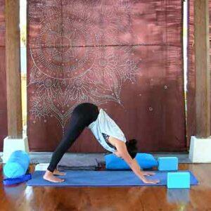 The Yoga Rescue - Online Yoga Studio - Prenatal 2nd Trimester
