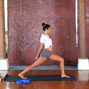 The Yoga Rescue Online Yoga Studio - Wayan Viqtim Vinyasa Flow for the Upper Body